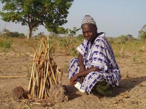 2003セネガル